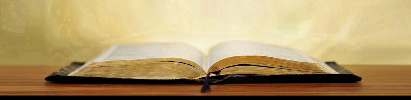 bible16